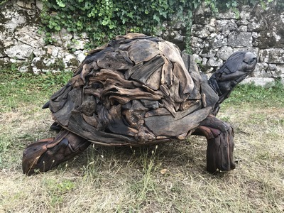 Geant turtle with more than hundred years, large size sculpture in drift wood (unique piece)